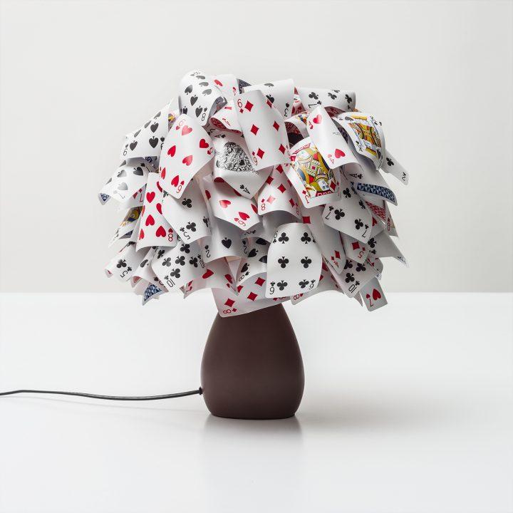 Baobab da tavolo (2015)
