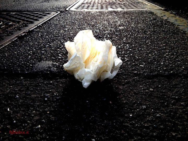 Rosa del deserto d'asfalto (2013)